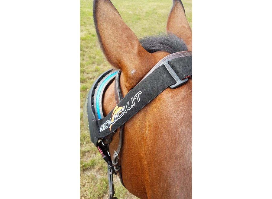 eVysor paarden beschermingsbril