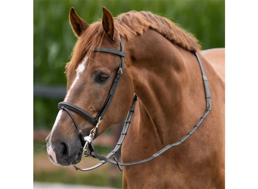 Working collection Training Bridle