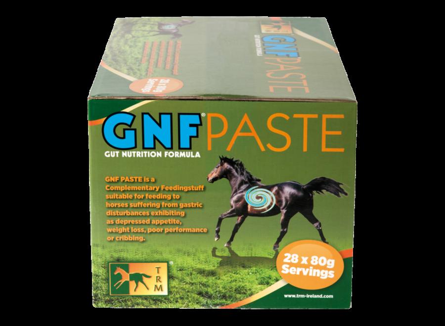 GNF Paste 28 x 80 gr