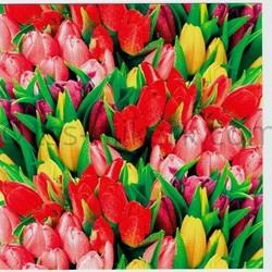 Flowers diverse