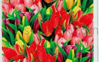 Bloemen divers