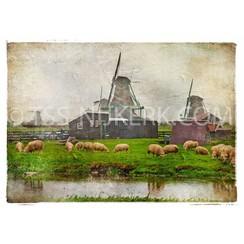 Holland's tafereel