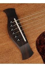 Richwood d-50 Master Series handmade dreadnought guitar
