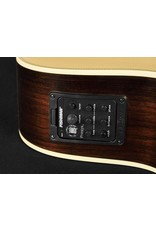 Richwood G-65-CEVA Master Series handmade grand auditorium guitar