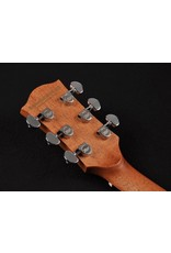 Richwood D-20-CE Master Series handgemaakte dreadnought gitaar