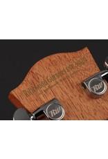 Richwood A-20 Master Series handgemaakt auditorium OOO gitaar
