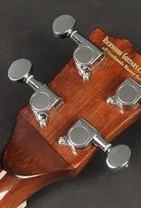 Richwood RMBU-404  Master Series ukelele banjo. open achterkant