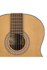 Salvador Cortez Salvador Cortez Solid Top Artist Series klassieke gitaar