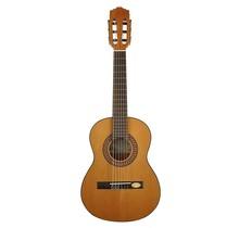 CC-22-PA Solid Top Artist Series klassieke gitaar