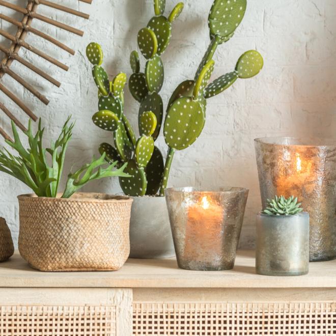 Grote Nep Cactus In Pot 64 cm