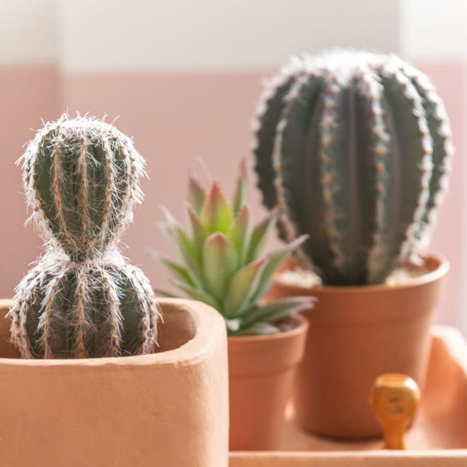 Kunst Cactus In Pot 2 st. - 26.5 cm