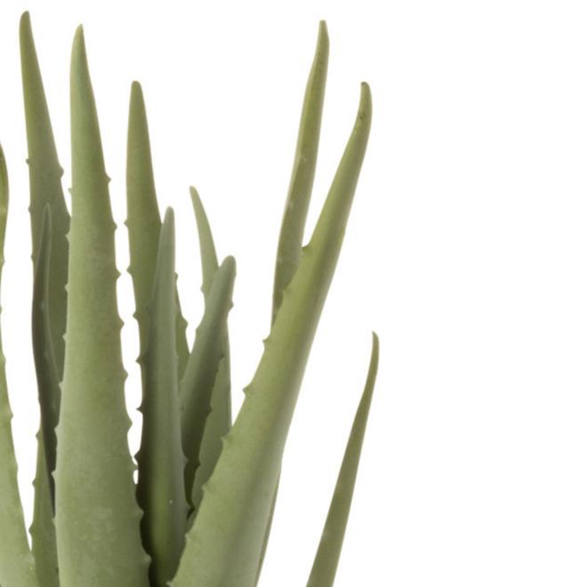 Aloe Vera Kunstplant in Pot 36 cm