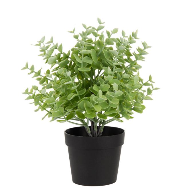 Kunstplant Vetplant In Pot 2 st. - 25 cm