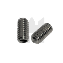 Stelschroef - DIN 916 RVS - M 2 x 6 - 25 stuks