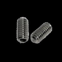 Stelschroef - DIN 916 RVS - M 2 x 10 - 25 stuks