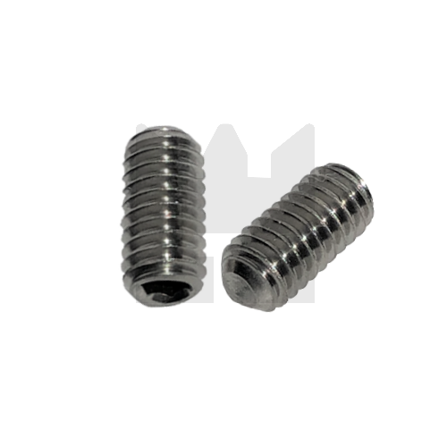 KING Microschroeven Stelschroef - DIN 916 RVS - M 2 x 10 - 25 stuks