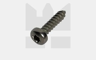 Plaatschroef bolkop - RVS - ISO 14585