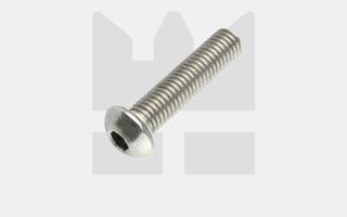Laagbolkopschroef - ISO 7380 - RVS