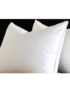 Silk Pillow with cotton cover
