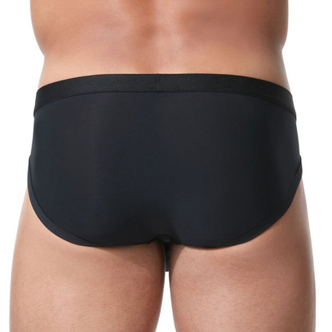 Gregg Homme Room-Max Brief