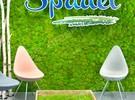 Plantenwand uit mosbol