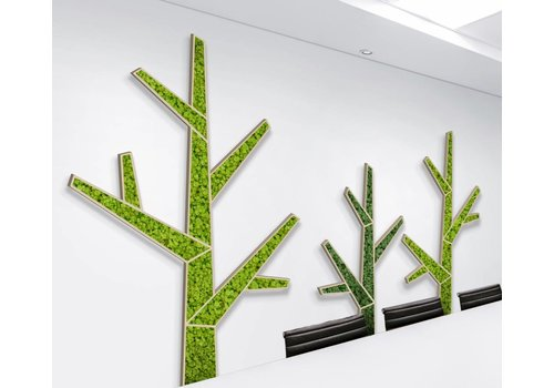 GreenOffice Akoestische Moss trees