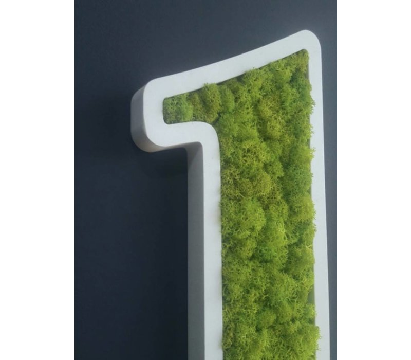 Pictogram uit mos - Toilets
