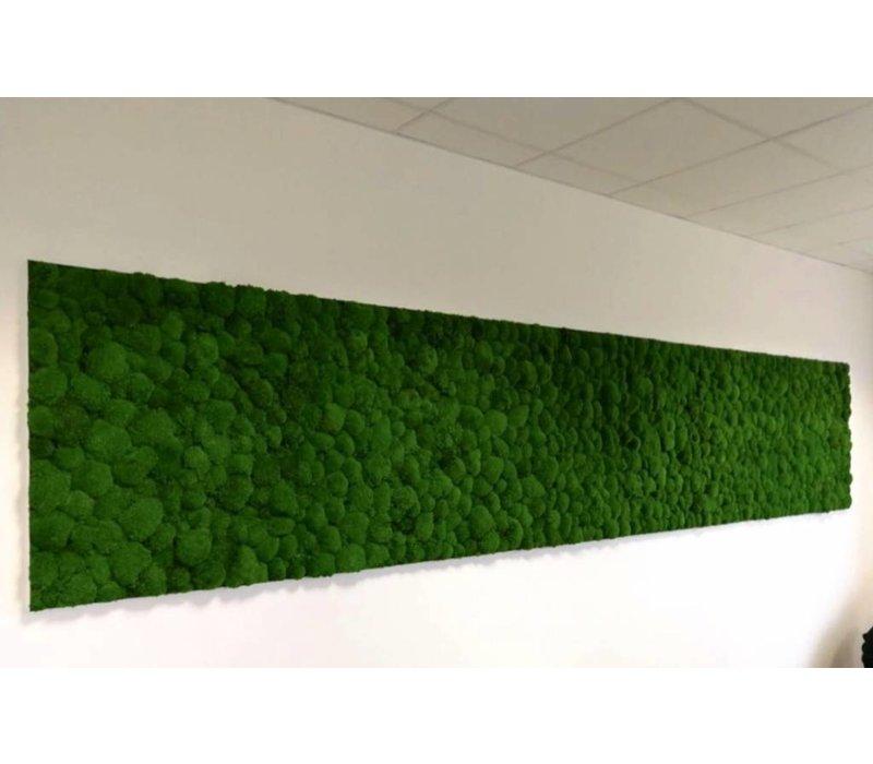 mur v g tal de mousse brand new office. Black Bedroom Furniture Sets. Home Design Ideas