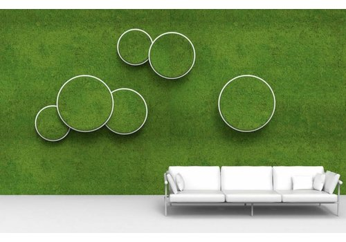 Green Mood Moss-Acoustics Circles Unit