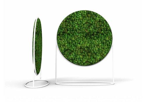 GreenOffice Cirkelvormig akoestisch paneel uit mos