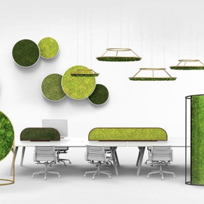 Vert au bureau