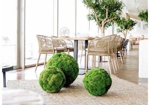 Green Mood Sphere akoestisch/decoratieve mosbol