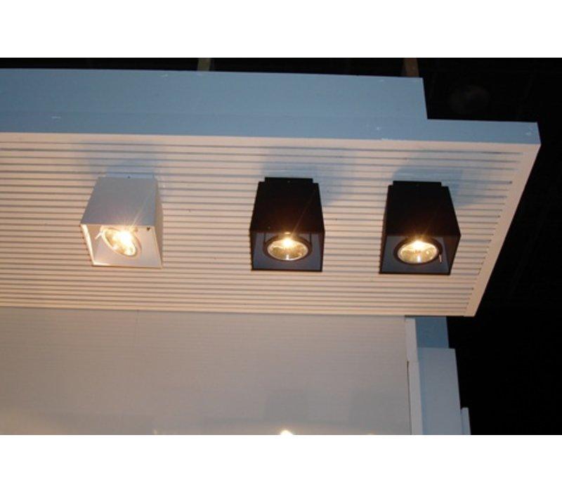 Memory ceiling plafondlamp