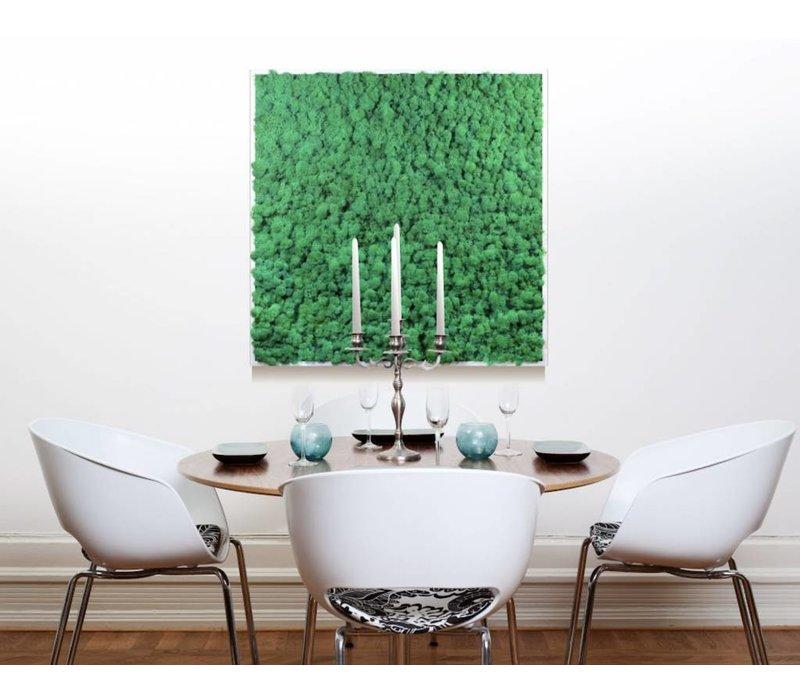 Khloé Mos-schilderijen akoestisch