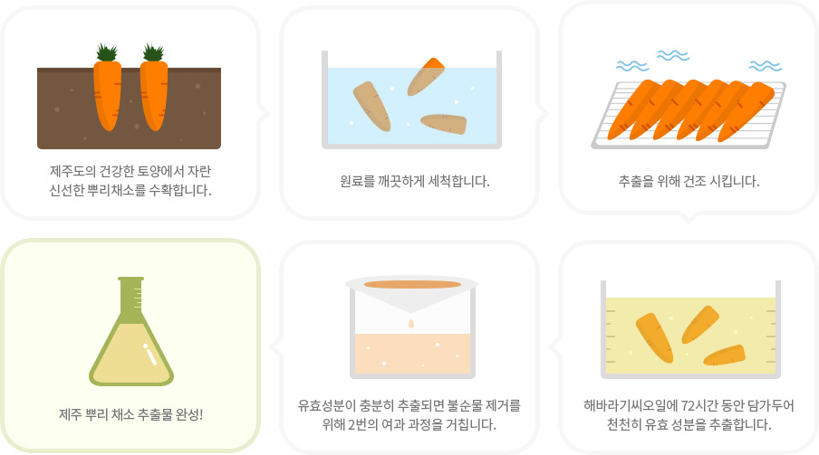 Jeju Root Energy Sheet Mask [Ginger]-4