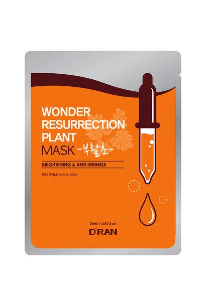 Wonder Resurrection Plant Mask