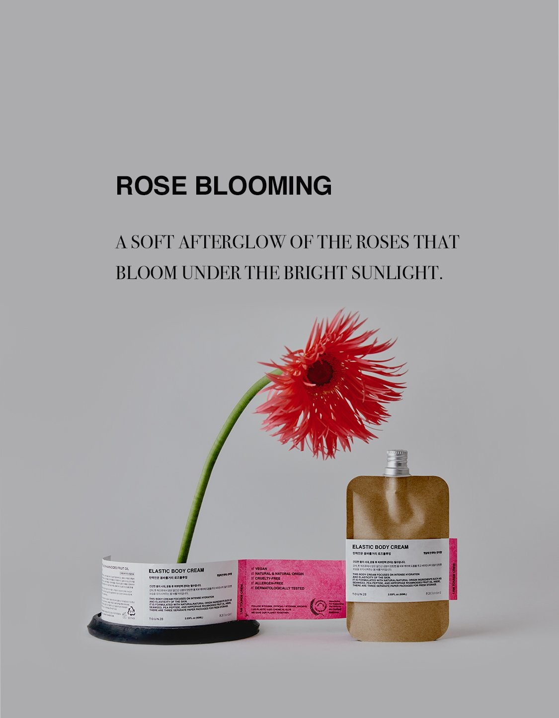 Body Cream-Lotion - Rose Blooming-2