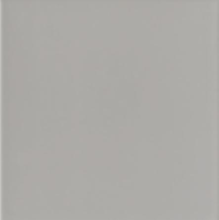 Mainzu Gris Perla Brillo 20 x 20 cm, €3 p/m2