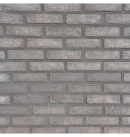 Linea Uno Brick †ber Dronten