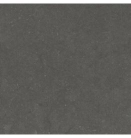Top Sanitary Noon Anthracite 60 x 60 cm, €11,95 per m2
