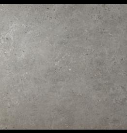 Top Sanitary Beren Dark Grey 60 x 60 cm, €15,95 per m2