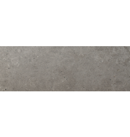 Top Sanitary Beren Dark Grey 20 x 60 cm, €11,95 per m2