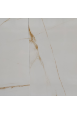 Top Sanitary Fontana 56,5 x 56,5 cm, €9,95 per m2