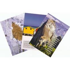 Mixpakket enkelvoudige kaarten: FRANS