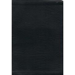 Engels : Huisbijbel J.N.Darby vertaling, zwart, leer, goudsnede