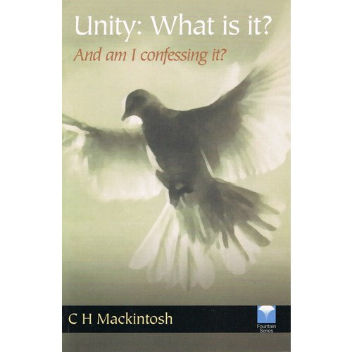 Unity, What is it?