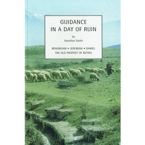 Guidance in a Day of Ruin