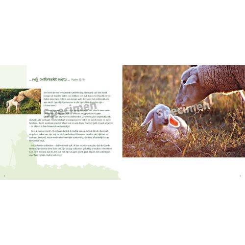 De goede Herder en Psalm 23