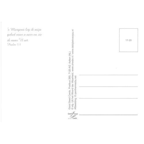 Ansichtkaart 17-20