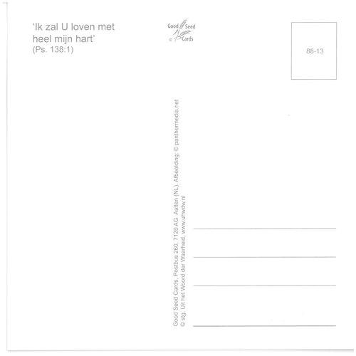 Enkelvoudige ansichtkaart 88-13